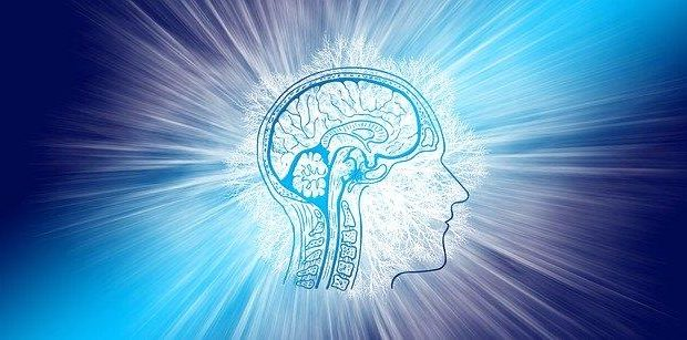 Intelligence, Brain, Think, Intelligent, Communication